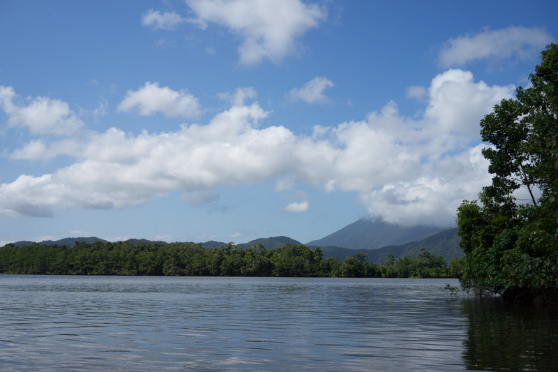 Cruise on the Daintree River