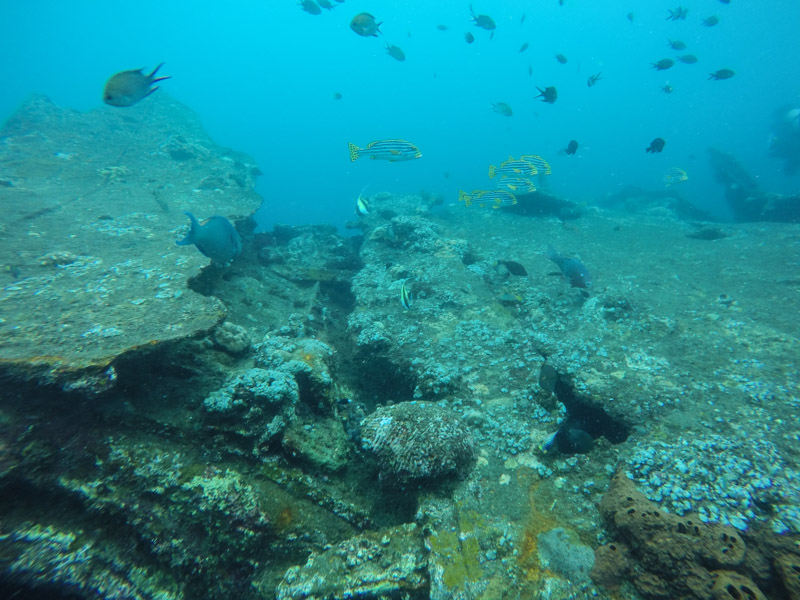The Top of the Wreck